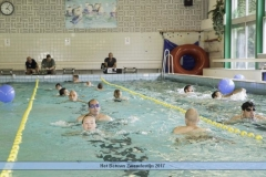 Het Betuws zwemfestijn 2017 (27)
